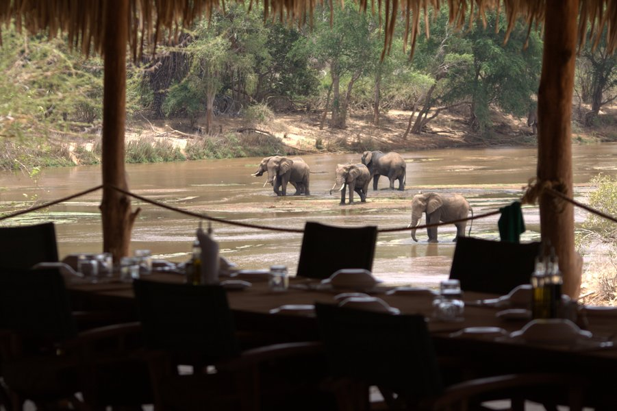 Safari in Kenya - Kudu Camp